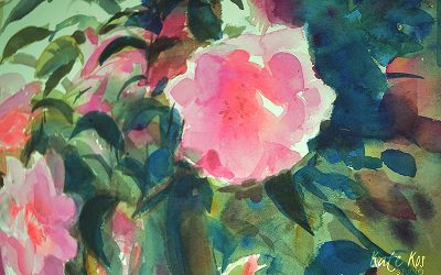Camellias – time lapse video