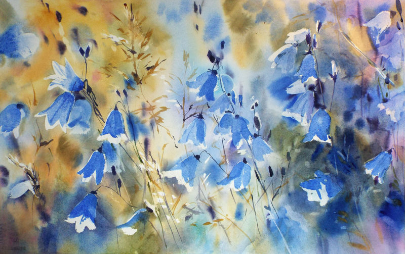 Harebells by Kate Kos