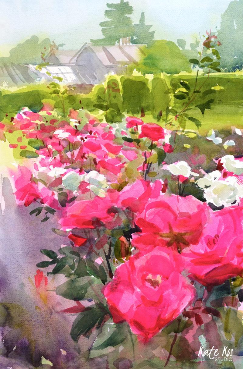 2019 art painting watercolor plein air by Kate Kos - Farmleigh Roses II